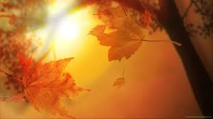 И утре сончево и топло време