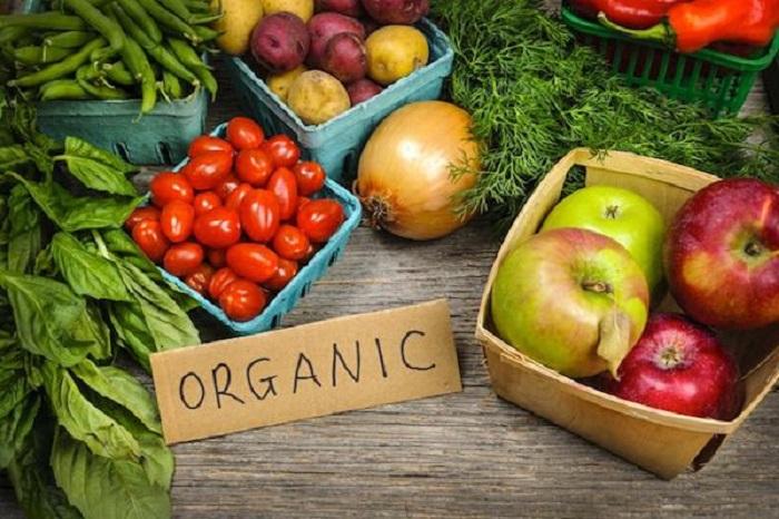 Промовирана мобилна апликација за пронаоѓање органска храна во Македонија