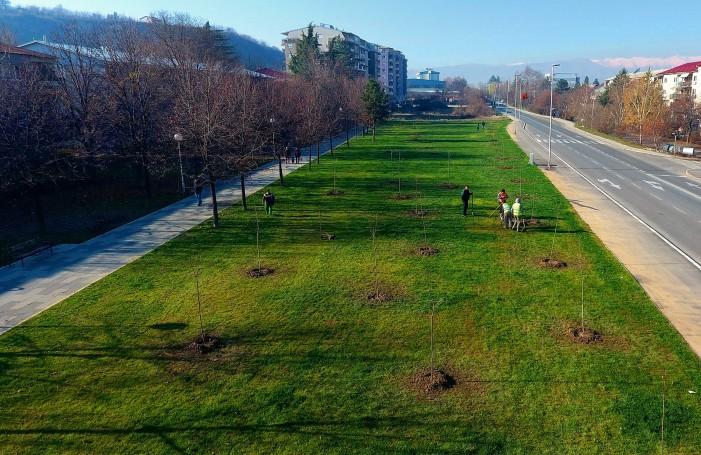 Во Карпош засадени 60 дрвца во рамките на акцијата за раззеленување на Скопје
