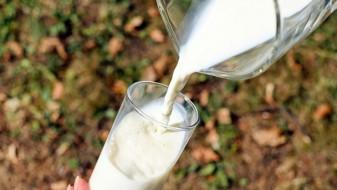 АХВ: Во земјата нема небезбедно млеко и млечни производи