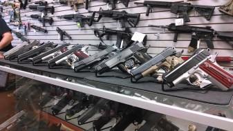 Деветнаесет пиштоли и девет пушки украдени од продавница за ловна опрема