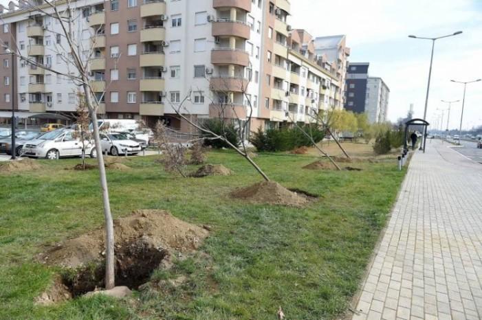 """""""Паркови и зеленило"""": Инфраструктурните зафати сè повеќе го оштетуваат зеленилото во Скопје"""