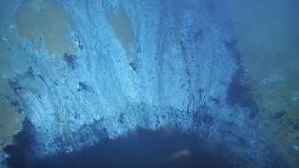 (Видео) Езеро под површината на морето што е смртоносно за живиот свет