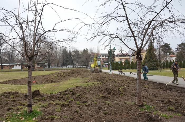 Се уредува зеленилото на две локации во Градскиот парк