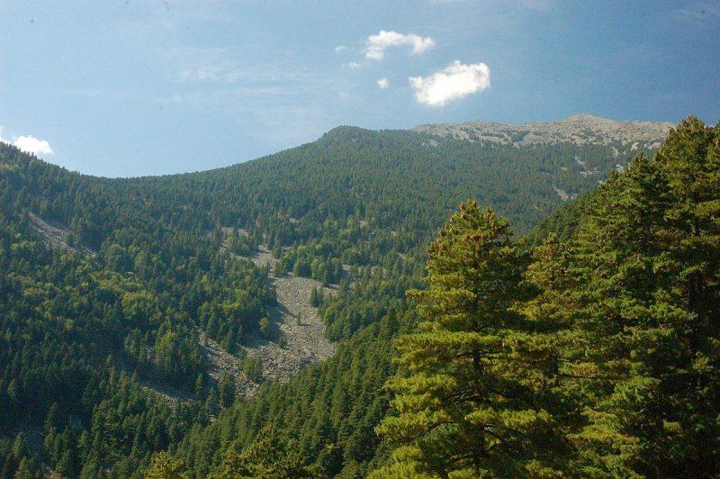 Петнаесетгодишно девојче падна во бездна на Селечка Планина